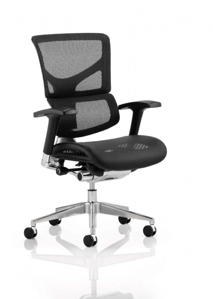Ergonomic Posture Chair Black Mesh Breathable Mesh Split Backrest Design Black Frame